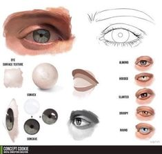 Fresh daily compilation of drawing, sketching, design and photoshop resources and references for designers and picture artists. filtered by eye drawing reference Digital Art Tutorial, Digital Painting Tutorials, Art Tutorials, Drawing Tutorials, Drawing Techniques, Drawing Tips, Anatomy Reference, Art Reference, Design Reference