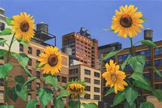 Rooftop Garden, 24x36 oil painting by Nick Savides #oilpainting #art #rooftop #garden #sunflowers