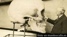 Lo #Enigmático en #Mundo ¿se destruyeron miles #EsqueletosDeGigantes en el #Año1900? ||| Más detalles en #WashingtonPost ||| #Enigmas & #Misteruis ¿que quieren ocultar? ...