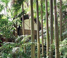 The Palm House/ Palm Garden House  Richard Leplastrier 1973-76  Bilgola, Sydney.  photos © Michael Wee (taken from Murdoch Books 70/80/90 Iconic Houses by Karen McCartney, 2011)
