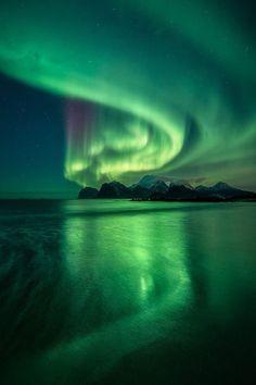 Aurora Borealis / Northern Lights - - Alyssa - Re-Wilding Beautiful Sky, Beautiful Landscapes, Beautiful Pictures, Aurora Borealis, Aurora Wallpaper, Northern Lights Wallpaper, Painting Northern Lights, Northen Lights, Ciel Nocturne