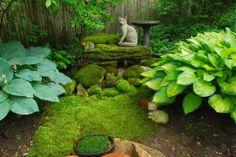 Rotary Botanical Gardens, Janesville, Wisconsin. Moss Garden