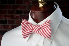 I'm really picky about bow ties, and this one makes the cut.