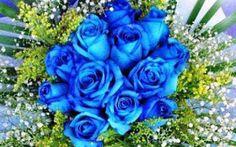 Google+ Flowers, Plants, Google, Roses, Plant, Royal Icing Flowers, Flower, Florals, Floral
