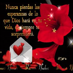 Spanish Greetings, Messages, God Is Good, Qoutes, Gift Wrapping, Inspirational Quotes, Gifs, Christian Quotes, Videos