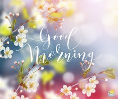 Are you searching for inspiration for good morning handsome?Browse around this website for very best good morning handsome inspiration. These amuzing quotes will make you enjoy. Good Morning Handsome, Good Morning Quotes For Him, Morning Quotes Images, Good Morning Funny, Morning Greetings Quotes, Good Morning Sunshine, Good Morning Picture, Good Morning Flowers, Good Morning Messages