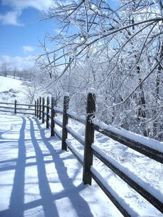 Love the Snow & the Fence line view