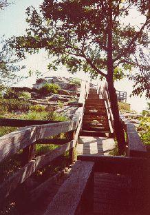 Shaded walkway to rock bluff overlook