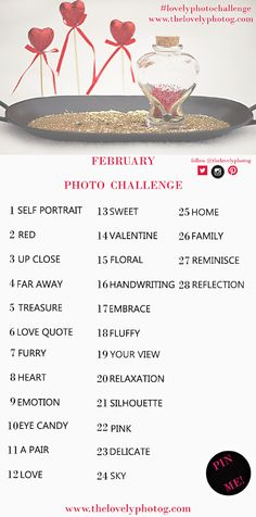 February Photo Challenge  Photo A Day Challenge #lovelyphotochallenge