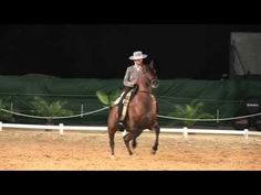 829-39 Camp. Español Doma Vaquera Brioso con Cristina C. Araujo Gomez - Paterna de Rivera - YouTube