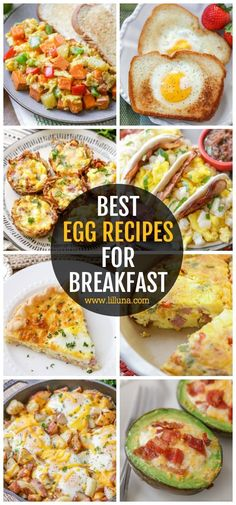 Eggs have so many nutritional benefits, and there are infinite ways to prepare them for breakfast! Check out this collection of breakfast egg recipes—classic egg breakfast foods, baked eggs, and bite sized egg recipes are all included! Breakfast Egg Casserole, Sweet Potato Breakfast, Egg Recipes For Breakfast, Casserole Dishes, Casserole Recipes, Protein Breakfast, Breakfast Ideas, Best Egg Recipes, Favorite Recipes