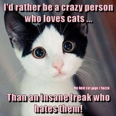 What's crazy about loving any animal? Why is there such prejudice against cats? It's only crazy to hate an animal!