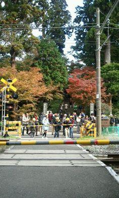 Children in North-Kamakura