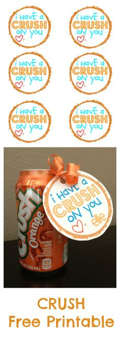I have a crush on you soda can Valentine's Day printable