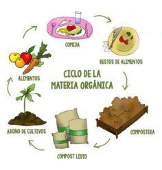 Planting, Environment, Animation, Marketing, Tips, Anime, Gardens, Composting Toilet, Organic Matter
