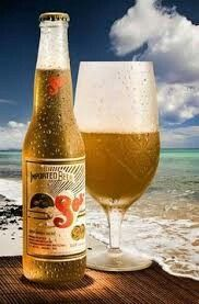 Sol.. Mexican beer
