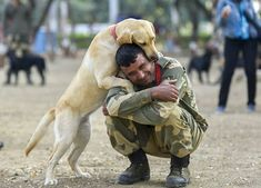 Dogs are not just a man's best friend but also can turn into hearty warriors and protectors when needed and that is exactly what our dogs do, said Colonel Raman Military Working Dogs, Military Dogs, Police Dogs, Military Service, War Dogs, Police Dog Training, Navy Petty Officer, Fancy Dog Collars, Malinois Puppies
