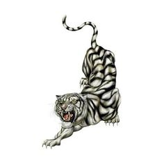 Angry Tiger Tattoo ❤ liked on Polyvore