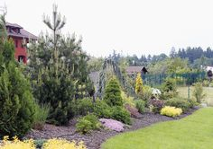 It has probably crossed your mind to hire a professional to landscape your yard. Modern Landscape Design, Modern Landscaping, Garden Landscaping, Sidewalk, Home And Garden, World, Plants, Gardens, House
