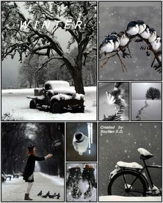 '' Winter '' by Reyhan Seran Dursun
