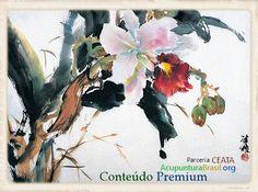 Ceata-AcupunturaBrasil.org