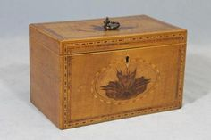 Satinwood Tea Caddy Box - circa 1810