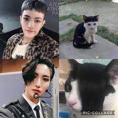 ATEEZ JOKES part four of my ATEEZ JOKES updates every saturday or … Blackpink Memes, Funny Kpop Memes, Jay Park, K Pop, Jung Yunho, Kim Hongjoong, Meme Faces, Reaction Pictures, Kpop Boy