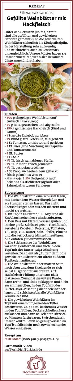 Etli yaprak sarması ~ Gefüllte Weinblätter mit Hackfleisch ~ Rezept, Video