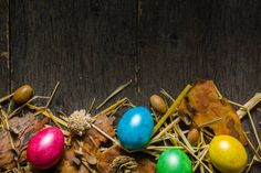 easter background with multicolored chicken eggs on a gray wood