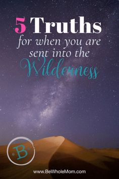 Have you been sent into a spiritual wilderness?  Or maybe the drought of a spiritual desert?  Take heart, sweet sister, the Lord has a plan even in this!  5 Truths for when you are sent into the wilderness Christian Marriage, Christian Faith, Christian Living, Desert Quote, Praying Wife, Grow In Grace, Spiritual Formation, Spiritual Transformation, Faith Walk