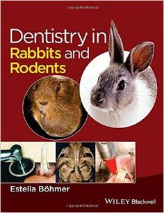 Dentistry in Rabbits and Rodents: Amazon.co.uk: Estella Böhmer: 9781118802540: Books