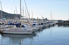 El Puerto de Cartagena se une a Ecoports