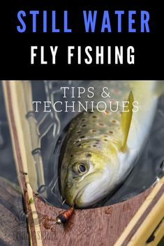 Fly fishing isn't reserved for just rivers and streams. Still water fly fishing offers just as much fun and excitement. This article from FishingSkillz.com goes over all the best tips, techniques and tactics for still water fly fishing. So whether its fly fishing lakes from shore or for trout in ponds, you'll want to check this one out. #flyfishing #stillwater #fishing #tips