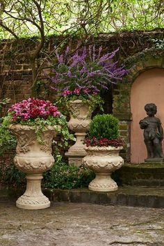 The rich deep hues of the flowers and greenery against the lighter pots and dark wall are arresting and very beautiful.