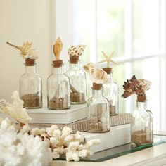 Shop Wayfair for Birch Lane Seashell Glass Bottles - Great Deals on all Decor products with the best selection to choose from!