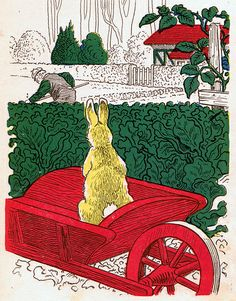 His Back was Turned ....from The Tale of Peter Rabbit by Beatrix Potter, published by M.A. Donohue and Co., Chicago.