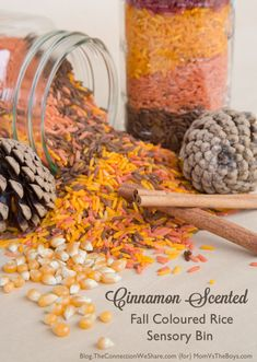 Cinnamon Scented Fall Colored Rice Sensory Bin