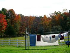 Out to Dry (So. Maine) - Photo by Tiffannie Bond
