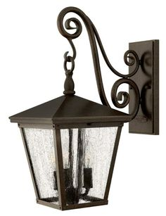Trellis is a traditional European hanging wall lantern design in an Aged Zinc finish with clear glass or Regency Bronze with clear seedy glass. The large scroll arm detail, cast loop finial and true rivet detail create a refined elegance. Wall Lights, Elk Lighting, Wall Sconces, Outdoor Wall Sconce, Hinkley Lighting, Outdoor Walls, Led Outdoor Wall Lights, Led Lights, Light