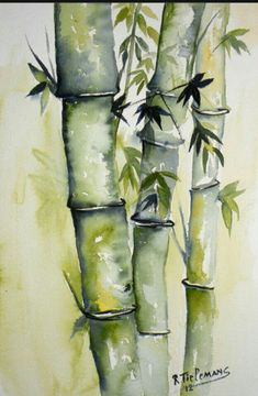 Watercolor Bamboo