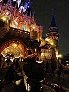 Tokyo DIsneyland, Mickey and Castle at night