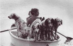 Brigitte Bardot - English Setters Rowboat & DOGS Photo (10/29/2007)
