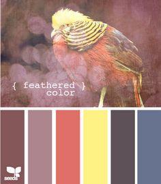 #colour #inspiration