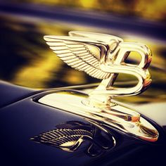 Gold Bentley logo