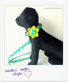 #Collar y correa #handmade para #perros muy fashion :)