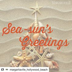 Credit to @margaritaville_hollywood_beach  Wishing you a wonderful Christmas Eve full of friends and family from our little slice of paradise at Margaritaville Hollywood Beach Resort.     #HollywoodTapFL #HollywoodFL #HollywoodBeach #DowntownHollywood #HardRockHolly #Miami #FortLauderdale #FtLauderdale #Dania #Davie #DaniaBeach #Aventura #Hallandale #HallandaleBeach #PembrokePines  #Miramar #CooperCity #Plantation #SunnyIsles #MiamiGardens #NorthMiamiBeach #Broward