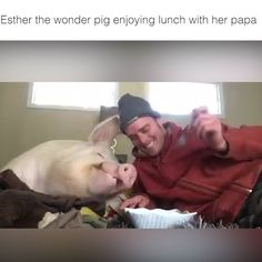 I've never loved a pig so much   Credit: Esther the Wonder Pig