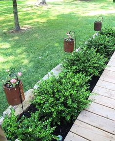 rusty paint cans LOVE this!  Want to do it in the walk way up to the front door.