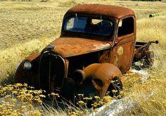 Photo Gallery: Abandoned Cars and Trucks Farm Trucks, Cool Trucks, Pickup Trucks, Rat Rods, Classic Trucks, Classic Cars, Abandoned Cars, Abandoned Vehicles, Abandoned Places