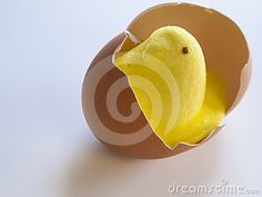 Easter Peeps Stock Photos, Images, & Pictures – (250 Images)